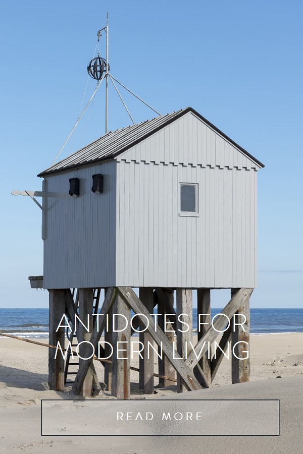 The|Tides Wellness antidotes